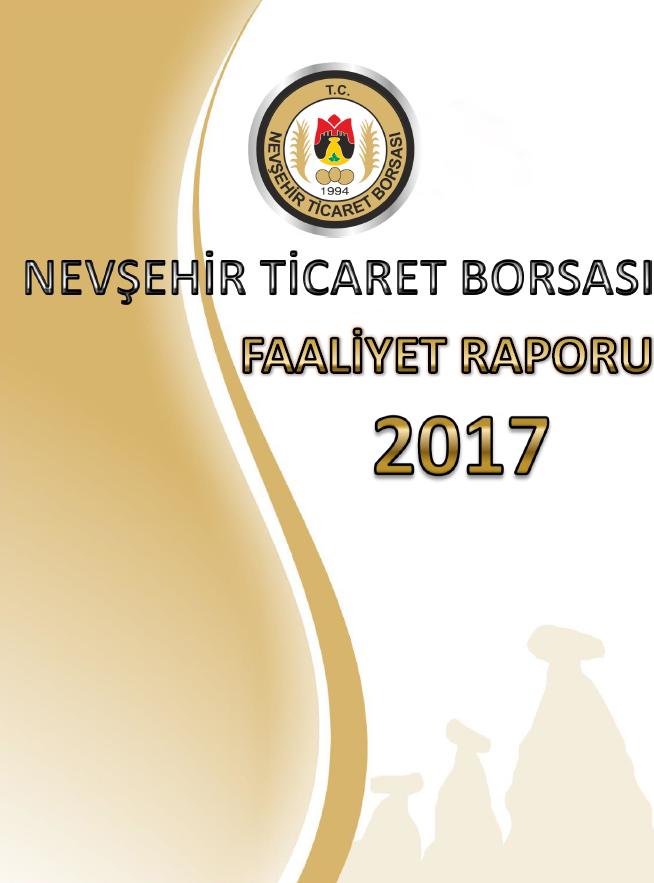 FAALİYET RAPORU 2017